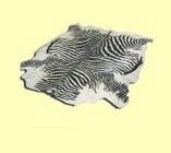Шкура зебры черно-белая