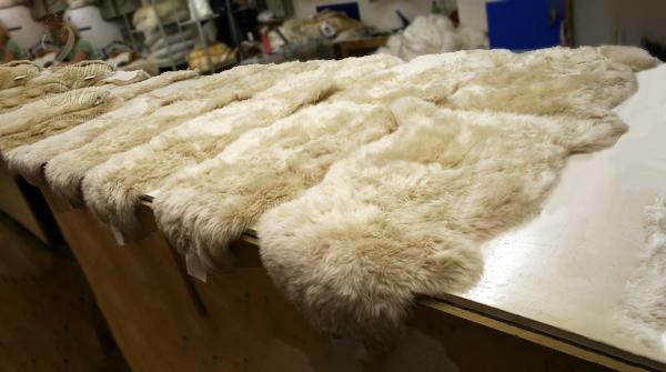 Овчина новозеландская на складе интернет магазина lamamia.ru