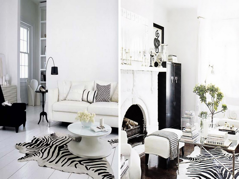 Шкура зебры в черно-белых интерьерах