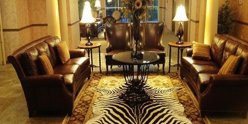 Шкура зебры в гостиной поверх ковра